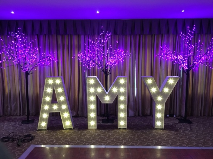 individual light up ltters a m y amy with blossom trees at brookfields hotel